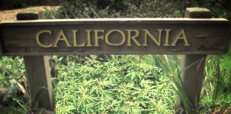 Northern California lawmakers move to punish driving while high on pot