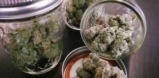 Tips to Store and Prolong Your Cannabis