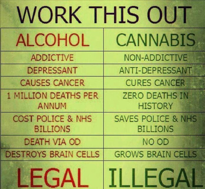 Why Alcohol Is Legal But Marijuana Banned