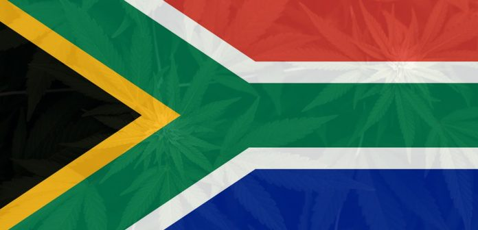 South Africa's Highest Court Considers Marijuana Legalization
