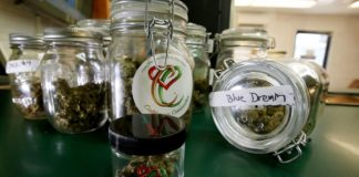 California begins accepting permit applications for the sale of recreational marijuana