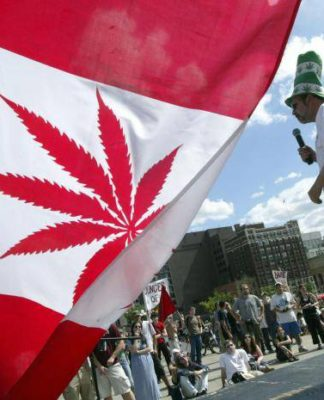 Canadians spending nearly as much on marijuana as wine, shows report